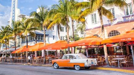 USA Miami cabriolet palmier